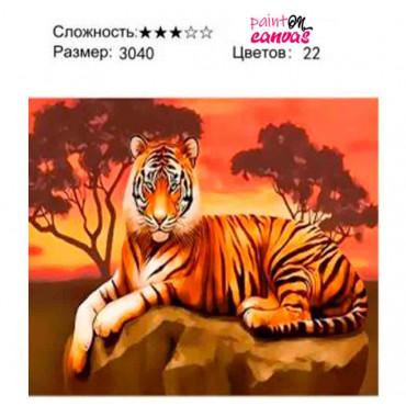 Благородный тигр картина по номерам 30х40