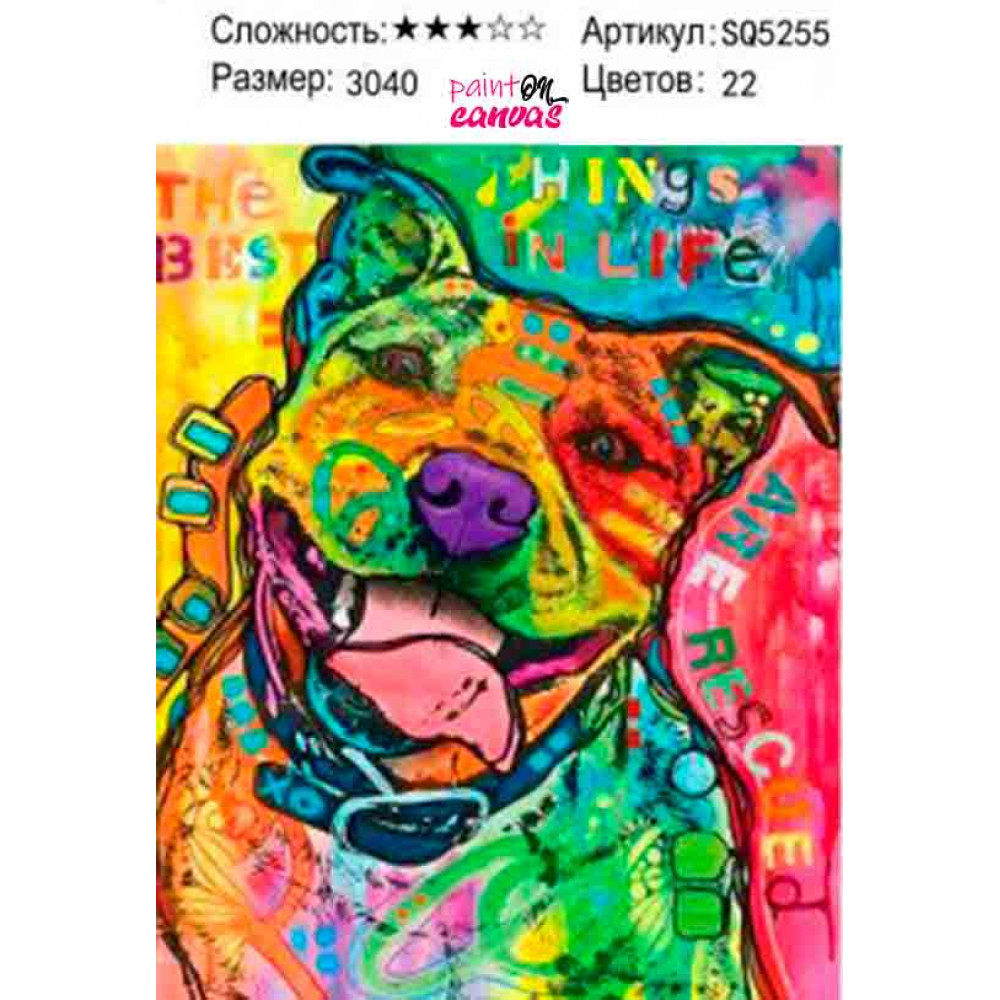 Красочный питбуль 30х40 раскраска