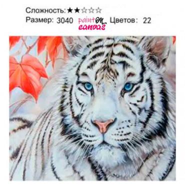 Белый тигр картина по номерам 30х40