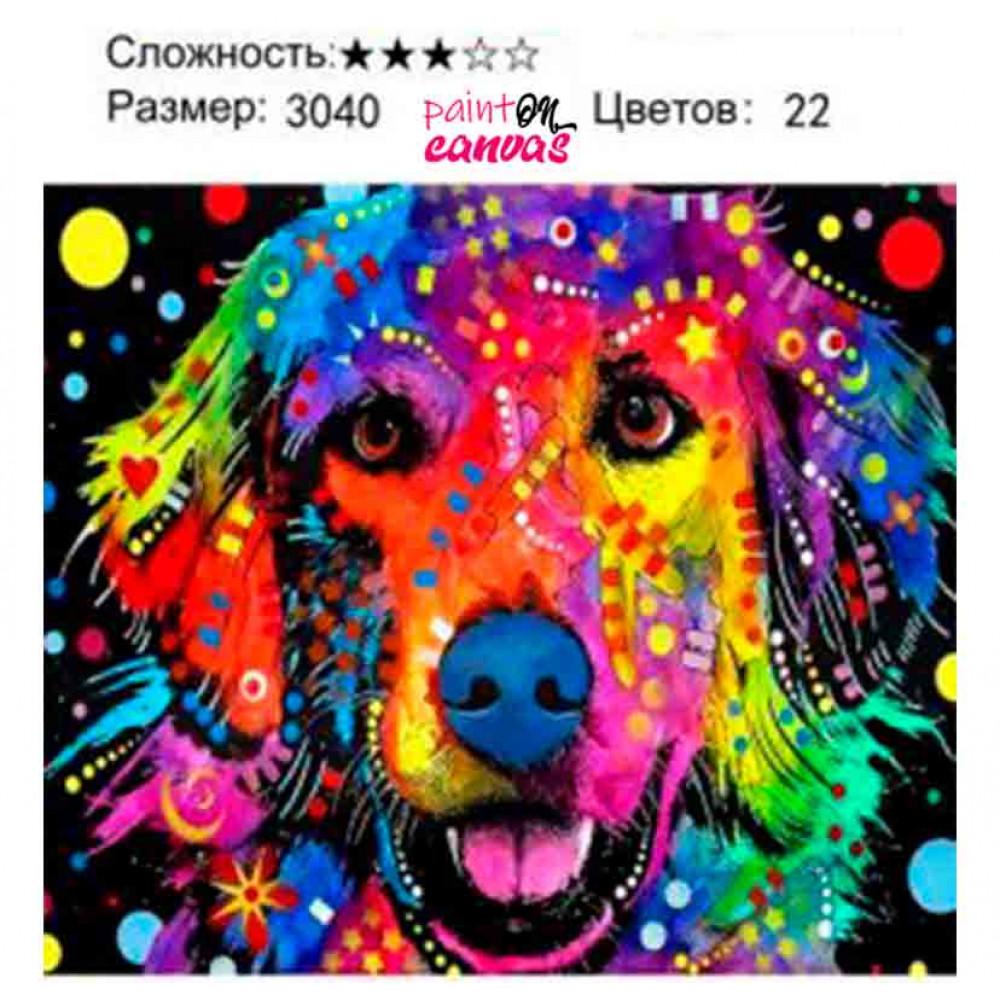 Весёлый Лабрадор 30х40 картина по номерам
