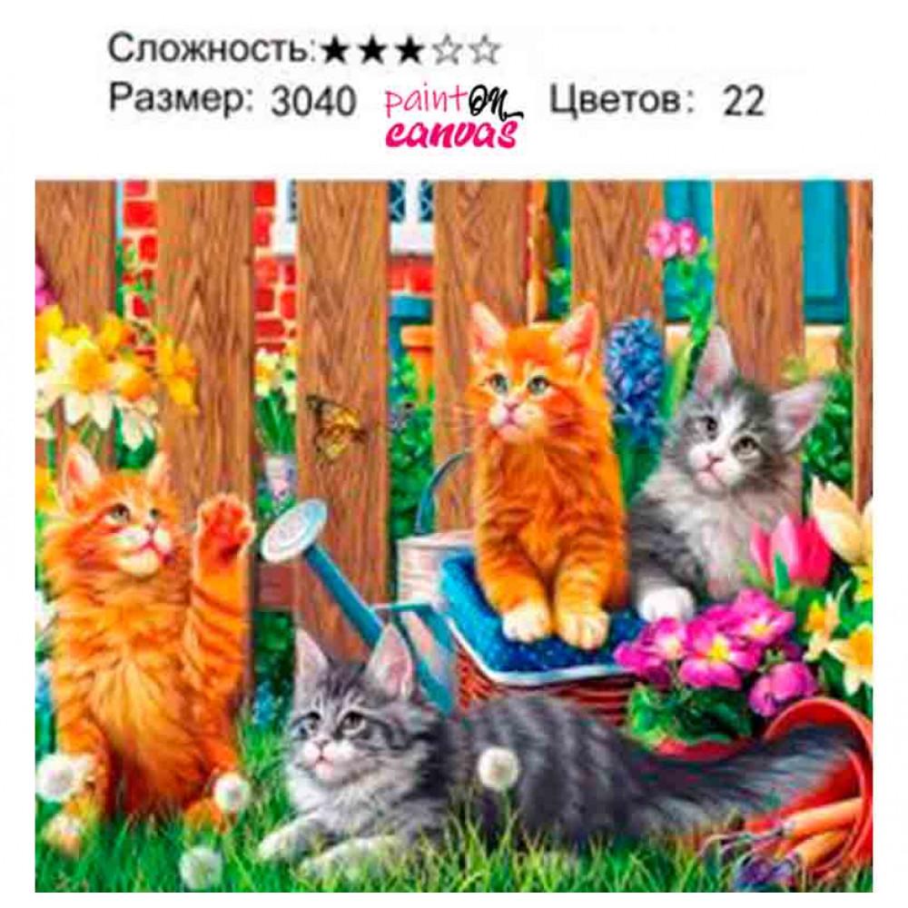 Кошки на даче 30х40 картина по номерам