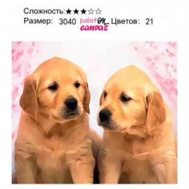 Два маленьких щенка картина по номерам 30х40