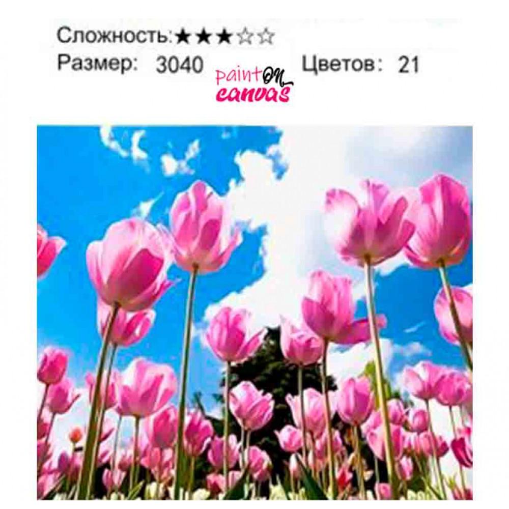 Розовые тюльпаны 30х40 раскраска по номерам