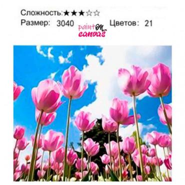 Розовые тюльпаны картина по номерам 30х40