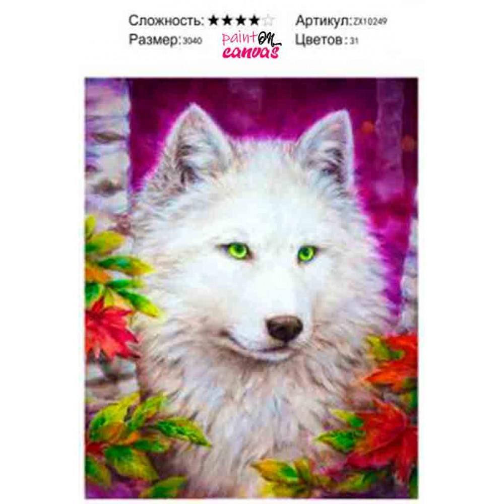 Белый волк 30х40 алмазная мозаика
