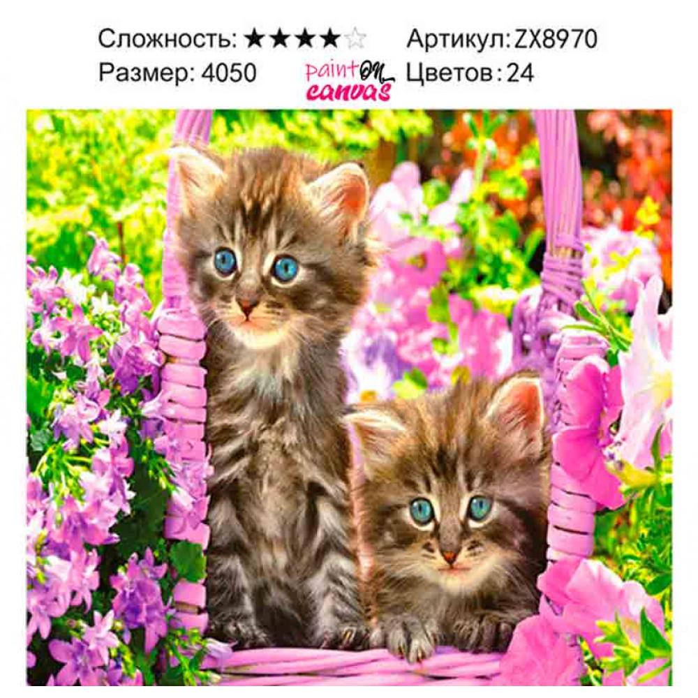 Котята в цветах 40х50 алмазная вышивка