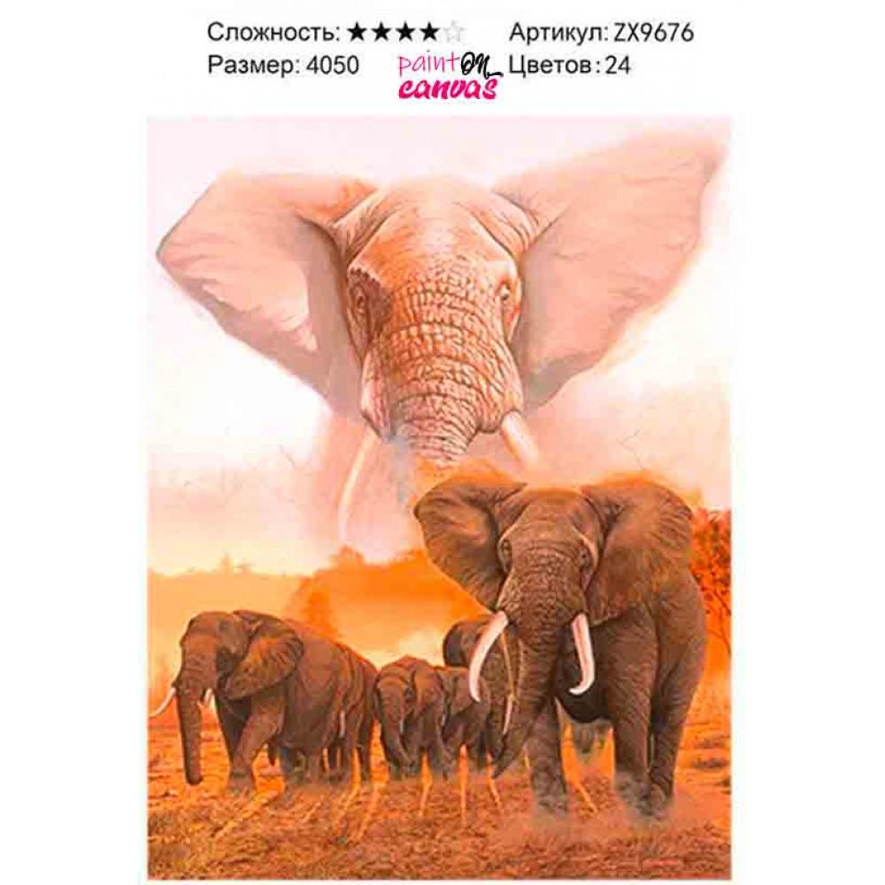 Африканские слоны 40х50 алмазная мозаика