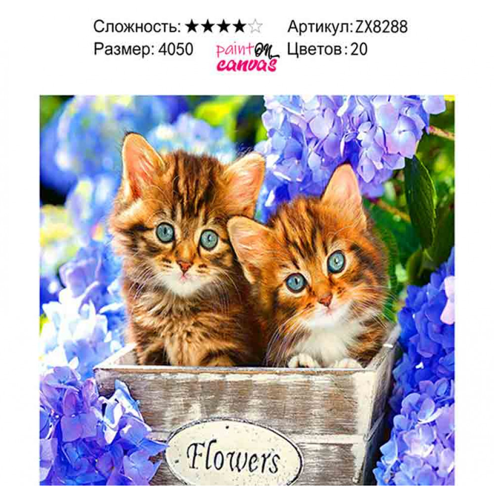 Котята и сиреневые цветы 40х50 алмазная мозаика