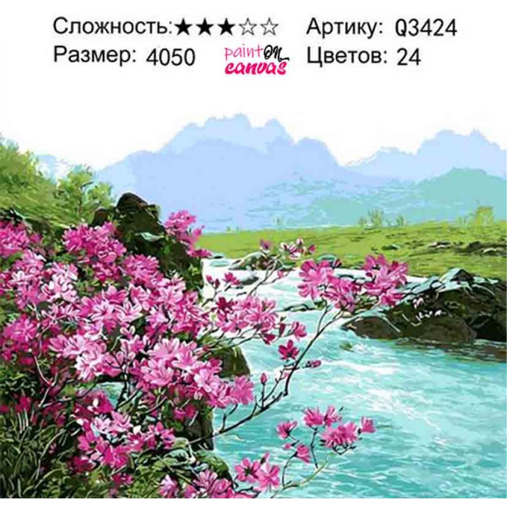 Цветы под горой 40х50 раскраска по номерам