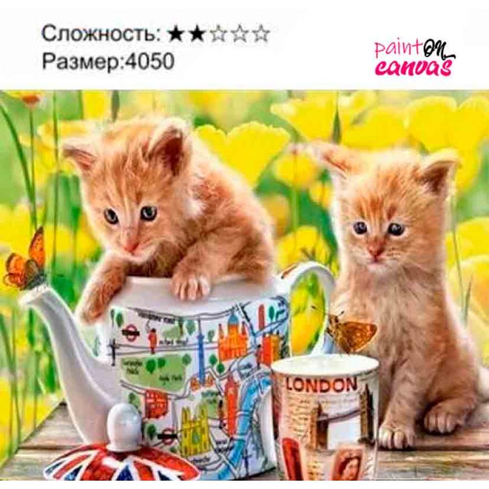 Два маленьких котенка рисуем-по-номерам на холсте