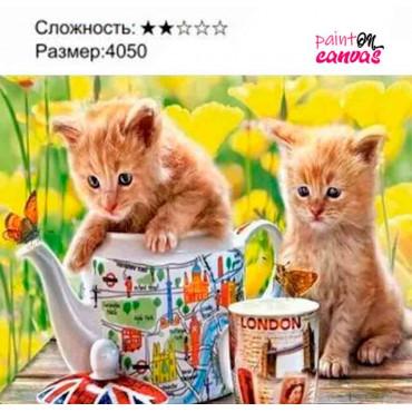 Два маленьких котенка картина по номерам 40х50