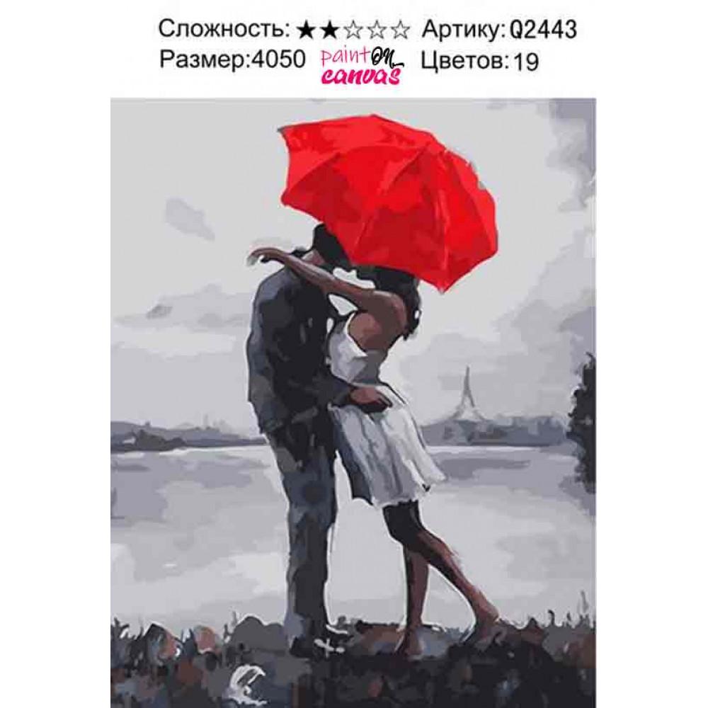 Дождливая любовь 40х50 раскраска по номерам