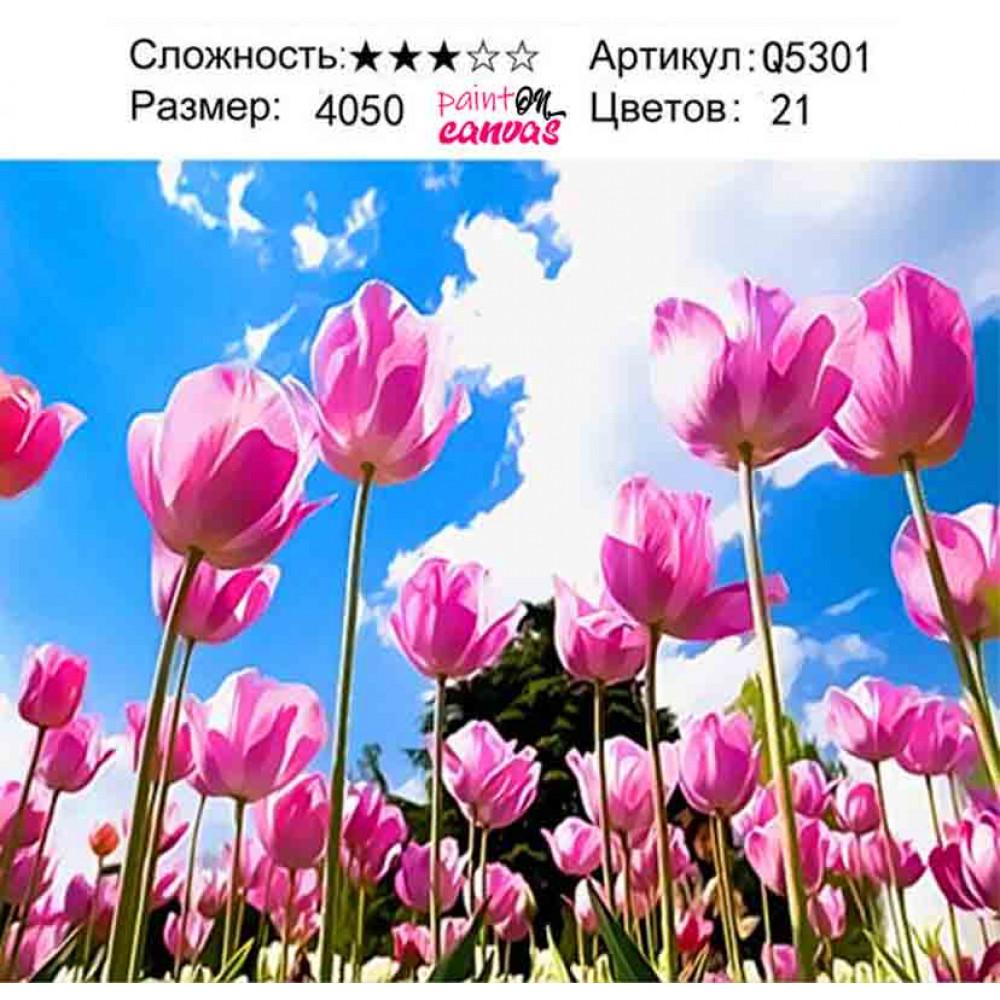 Тюльпаны в небе 40х50 картина по номерам