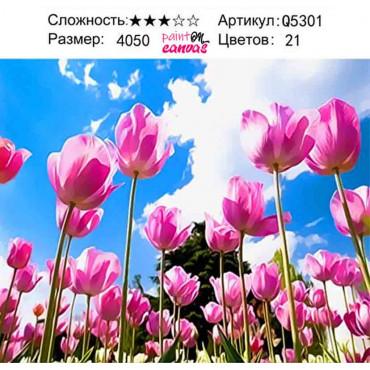 Тюльпаны в небе картина по номерам 40х50