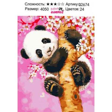 Маленькая панда картина по номерам 40х50