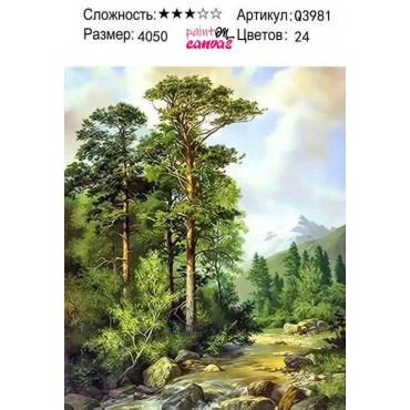 Дремучий лес 40х50 раскраска по номерам