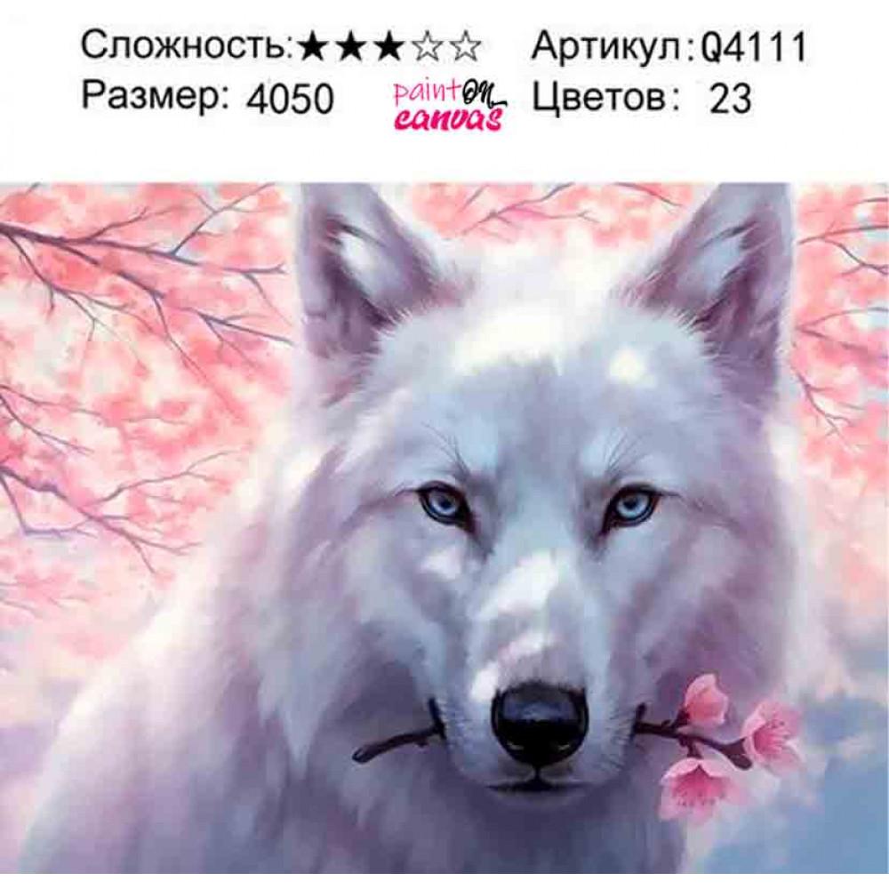 Белый волк и сакура 40х50 раскраска по номерам