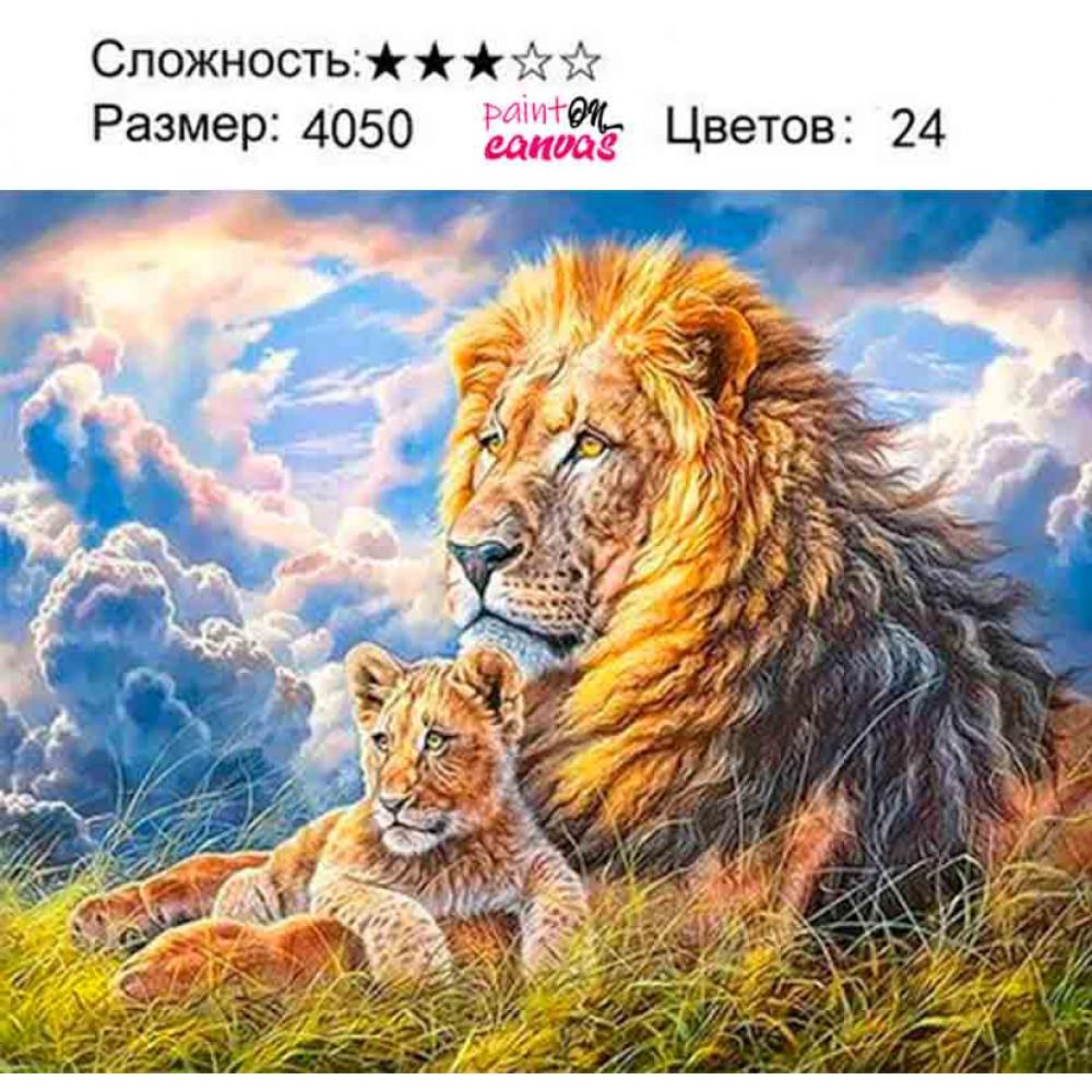 Король лев с сыном 40х50 раскраска по номерам