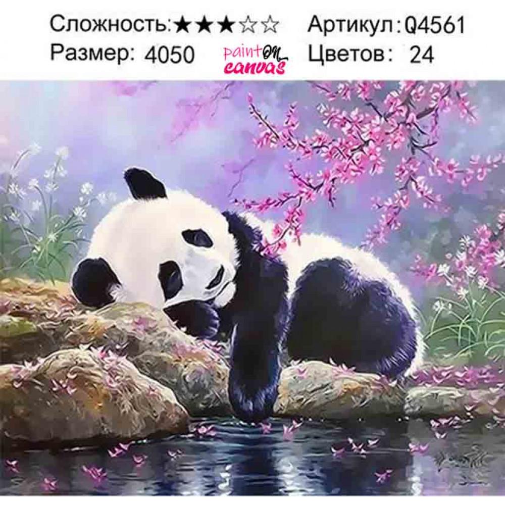 Панда и розовая сакура 40х50 раскраска по номерам