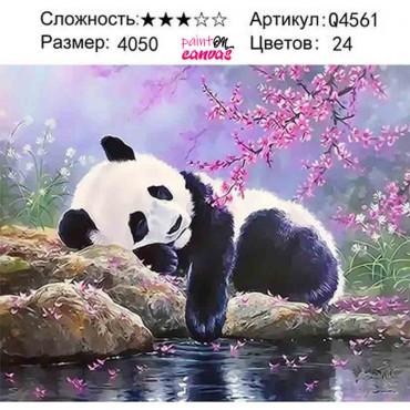 Панда и розовая сакура картина по номерам 40х50