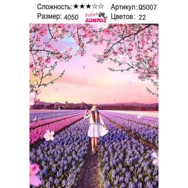 Девушка в поле картина по номерам 40х50