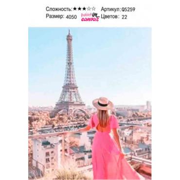 Розовое платье и вид на Париж картина по номерам 40х50