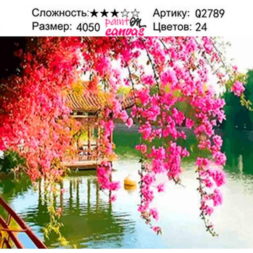 Розовая сакура над беседкой 40х50 раскраска