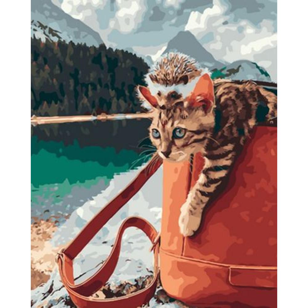 Кот и ежик на природе картина по номерам 40х50