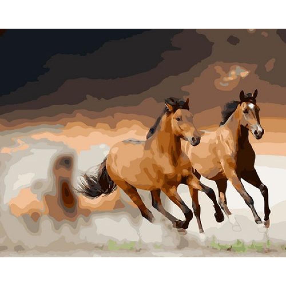 Лошади, табун картины по номерам 40х50