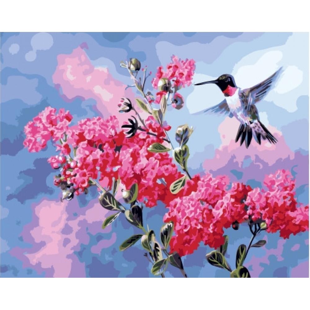 Колибри и цветы картина по номерам 40х50