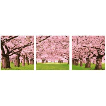 Японская сакура модульная картина 50х50