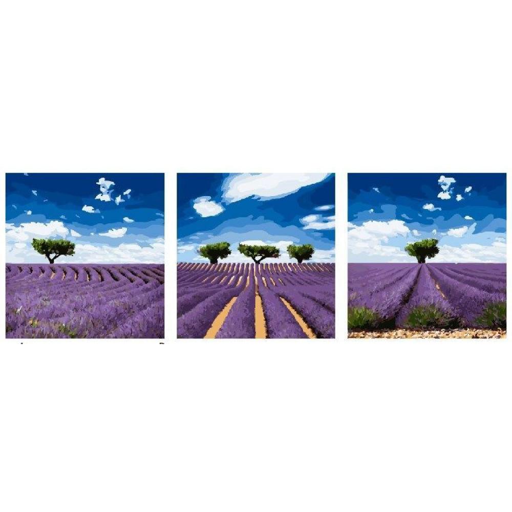 Цветочная поле картины триптих 3 шт