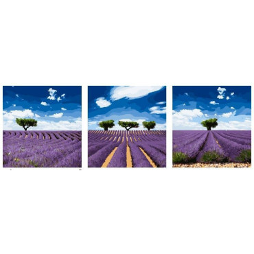 Фиолетовое поле модульная картина 50х50